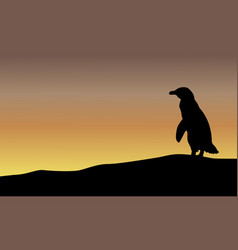 Beauty landscape with penguin silhouettes vector
