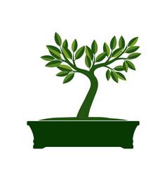 Green bonsai tree vector