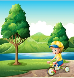 A boy playing with his small bike vector image