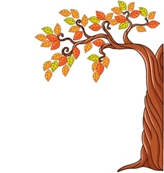 Autumn tree isolated on white background vector