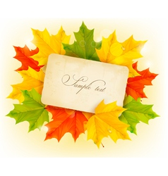 Autumn leaves with old paper vector image vector image