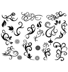 Swirling decorative floral design elements vector