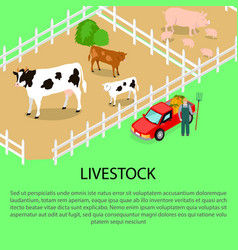 farm with livestock and text information below vector image vector image