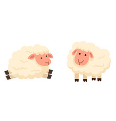 Isolated sheep on white background vector