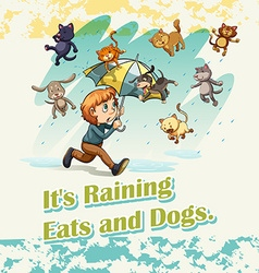 Its raining cats and dogs vector image vector image