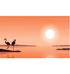 Silhouette of flamingo on beach scenery vector
