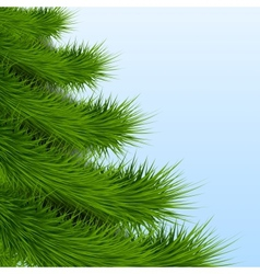 Background christmas tree spruce vector
