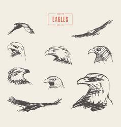 Set realistic eagles hand drawn sketch vector
