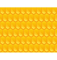 Pattern texture of corn vector