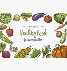 fresh vegetables background with space for text vector image