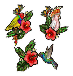 Tropical birds embroidery patches vector