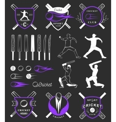 Set of Badges Cricket vector image