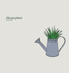 house plant in pot hand draw sketch vector image