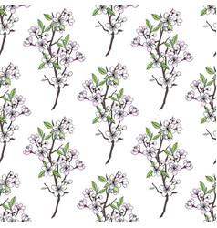 Seamless pattern with sakura vector