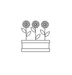 flowers icon vector image