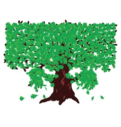 Oak with green leaves vector