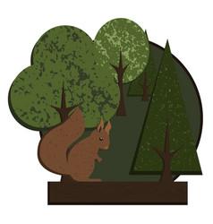Logo squirrel in forest vector