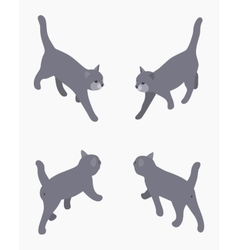 Isometric gray walking cat vector