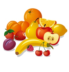 group of fruits vector image