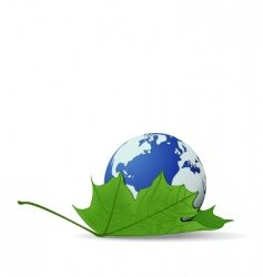 globe on leaf vector image