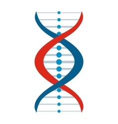 New DNA and molecule sign vector image