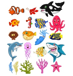 Sea life cartoon collection vector