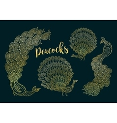 Golden peacocks set on dark turqiouse vector image