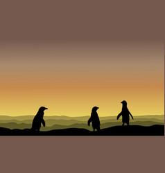 Silhouette of penguin at sunrise landscape vector