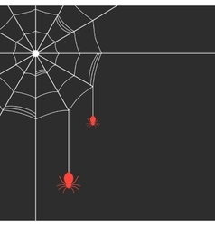 white cobweb with red spiders vector image