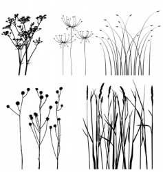 Black and white plants silhouettes set vector