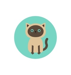 Siamese cat round circle icon in flat design style vector