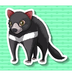 Tasmanian devil standing alone vector