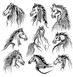 tattoo art design of horse collection vector image