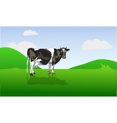 Cow on a green field vector
