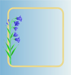 Bluebell campanula meadow spring flower vector