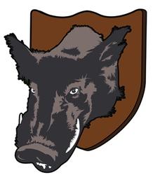 wild boars head vector image
