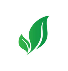 abstract leaf icon logo image vector image
