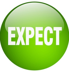 Expect green round gel isolated push button vector