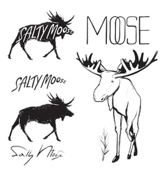 Moose and Lettering Monochrome vector image