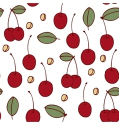 Seamless cherry pattern vector