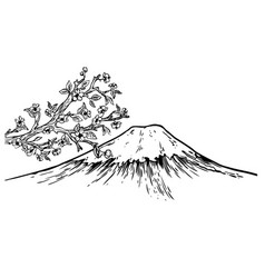 Mount fuji japan cherry blossom engraving vector