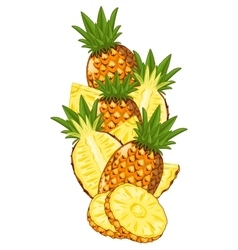Pineapple isolated composition vector image vector image