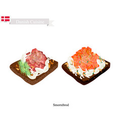 smorrebrod with salmon and tuna the national dish vector image vector image