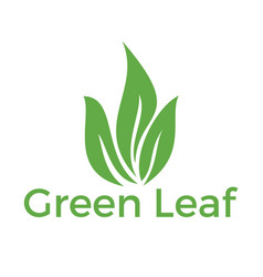 Green leaf logo design vector