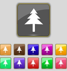 Christmas tree icon sign set with eleven colored vector