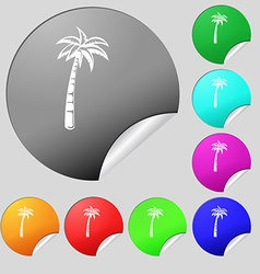 Palm icon sign Set of eight multi colored round vector image