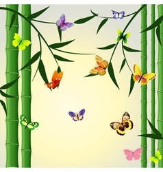 bamboo butterflies background vector image