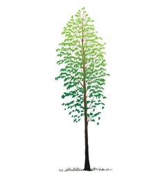 single tree vector image vector image