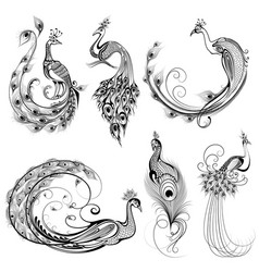 tattoo art design of peacock collection vector image vector image