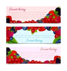 Berries banners set horizontal vector